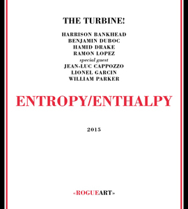 "The Turbine! ""Entropy/Enthalpy"" (Rogue Art) Benjamin Duboc, Harrison Bankhead, Hamid Drake, Ramon Lopez, Jean-Luc Capozzo, Lionel Garcin, William Parker"